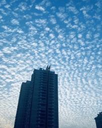 今天威廉希尔中文网站的天空
